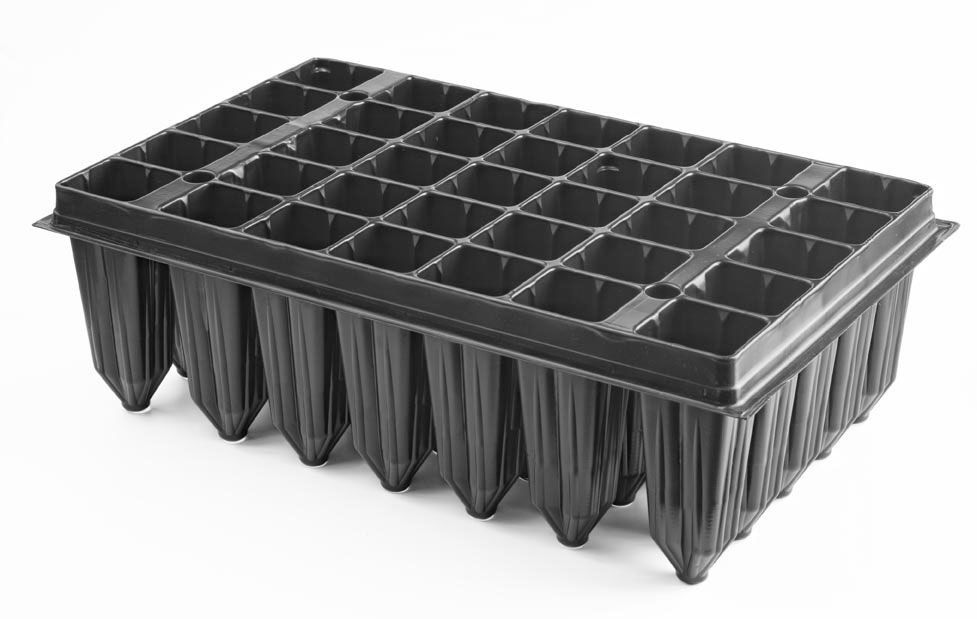 Alveolo forestal definicion transportes de paneles de madera for Definicion de vivero