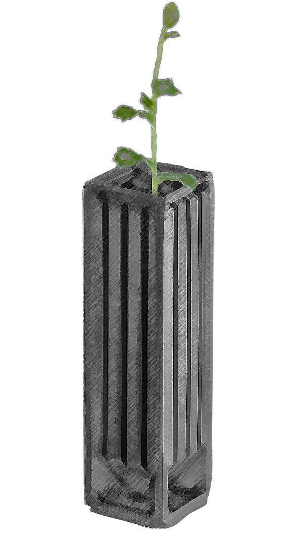 fullpot-trufa-llapis